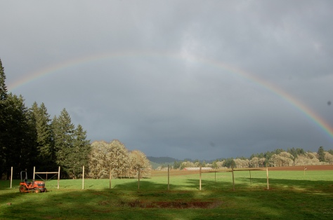 A good omen: A rainbow spans our tilled soil on the first day of spring.