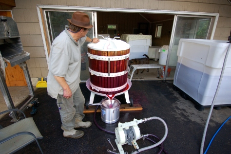 Bob pressing our 2013 vintage with a basket press.