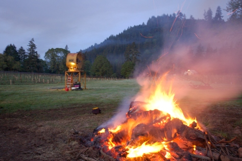 The stump fire and fan in action last spring.